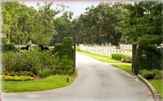 Hilton Head Island Realty And Rentals